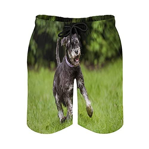 QUEMIN Shorts de Playa con cordón para Hombre, Schnauzer Miniatura The Green Grass Swim Trunks Malla de Forro de Secado rápido con Bolsillos, L