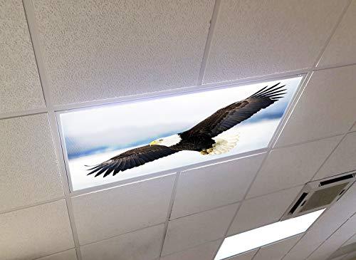 Bald Eagle - 2ft x 4ft Drop Ceiling Fluorescent Decorative Ceiling Light Cover Skylight Film