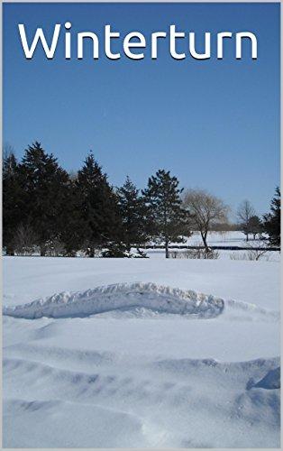 Winterturn