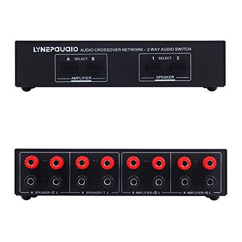 2 Eingänge und 2 Ausgänge des Vergleichs, passive Lautsprecher, 2 Lautsprecher, Verstärker, Audio-Schalter, Schalter