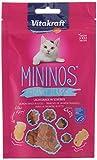 Vita Fuerza gato Snack mininos, salmón–En rodajas–40G