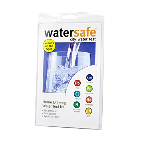 Watersafe WS-425B City Water Test Kit, 1 EA