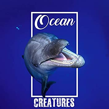 Ocean Creatures - Unique Collection of Sounds from Sea Animals such as Dolphins and Whales, Relaxation Music for Stress Relief, Deep Rest, Ultrasounds, Peace & Harmony