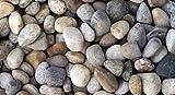 WUEFFE Ciottoli di Torrente - Sacchi da 25 kg - Sassi Fiume Pietre Giardino (15/30 mm, 1 Sacco da kg.25)