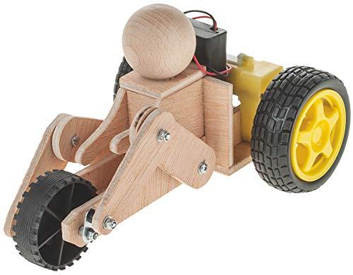 matches21 Triciclo vehículo de madera con motor de engranaje, juego de construcción, juego de construcción, kit eléctrico para niños a partir de 12 años