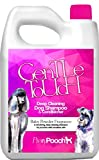Best Dog Shampoos - Pretty Pooch® Gentle Touch Dog Shampoo & Conditioner Review