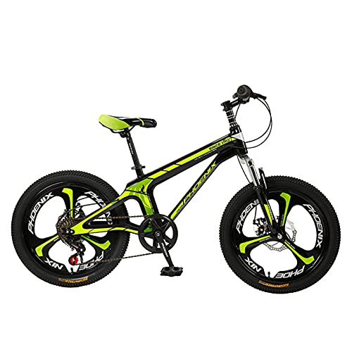 Axdwfd Kids Bike Mountain Bike, 20 Inches, Variable Speed Bike, Full Suspension Gear, Dual Disc Brakes, 4 Colors Bicycle (Color : Green)
