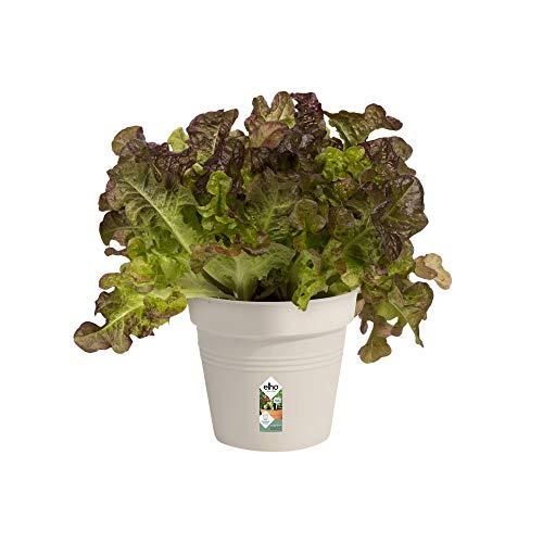 Elho Green Basics Pot De Culture 13 - Growpot - Coton Blanc - Intérieur & Extérieur - Ø 13 x H 12 cm