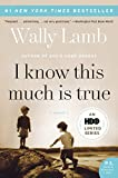 I Know This Much Is True: A Novel (P.S.) (English Edition)