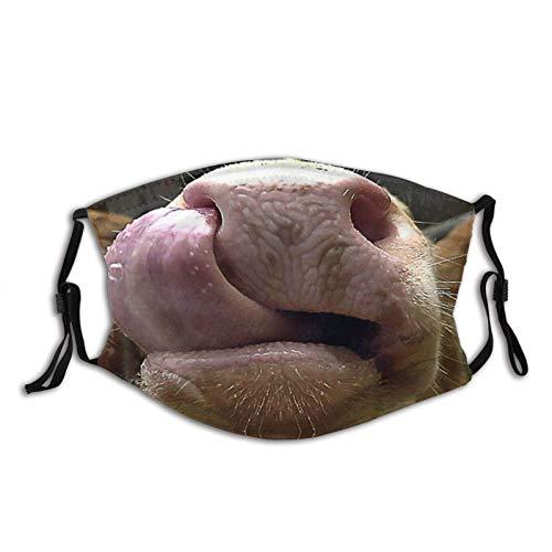 Máscara de cara divertida con estampado de animales, transpirable, con 2 filtros, para adultos, mujeres, hombres y adolescentes