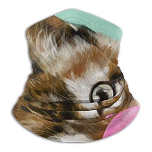 Anqi-Shop Kaugummi Baby Katze Fleece Halswärmer Gamasche Gesichtsmaske Outdoor Hals Gamasche Atmungsaktive Bandana Sturmhauben
