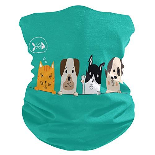 DOSHINE - Bandana para la cara, diseño de perro y gato, pasamontañas, multifuncional, pañuelo mágico, bufanda para cuello, abrigos faciales para ciclismo, polvo y deportes al aire libre