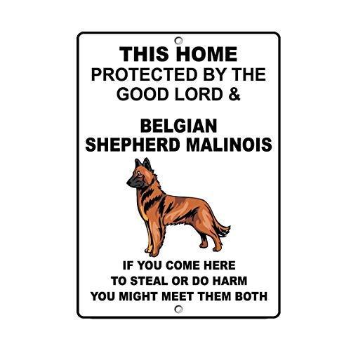 WSMsign Belgischer Schäferhund Malinois Hundehaus, Warnschilder für Gefahrenhaus, Dekoration für Hof, Zaun, Warnhinweis, lustige Metallschilder, 8 x 12 cm