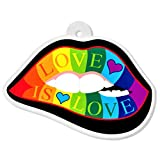 Lips Love is Love Acrylic Charm | The Perfect Rainbow Gay Pride Gift - For Jewelry Making Necklaces Bracelets Key Chains Beads Pendants Earrings Bangles Bows - One Sided w/ 2mm Hole (2 x 1.36 inches )