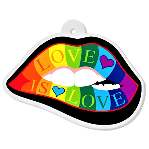 Lips Love is Love Acrylic Charm | The Perfect Rainbow Gay Pride Gift - For Jewelry Making Necklaces Bracelets Key Chains Beads Pendants Earrings Bangles Bows - One Sided w/ 2mm Hole (2 x 1.36 inches)