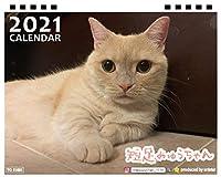 【予約販売】 短足みゅうちゃん 2021年 卓上カレンダー TC21131
