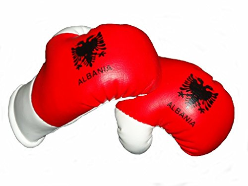 Sportfanshop24 Mini Boxhandschuhe ALBANIEN, 1 Paar (2 Stück) Miniboxhandschuhe z. B. für Auto-Innenspiegel
