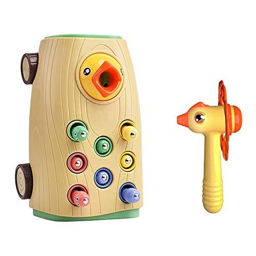 Royoo Specht - Juego para atrapar insectos y pájaros, magnético, juguete educativo para niños