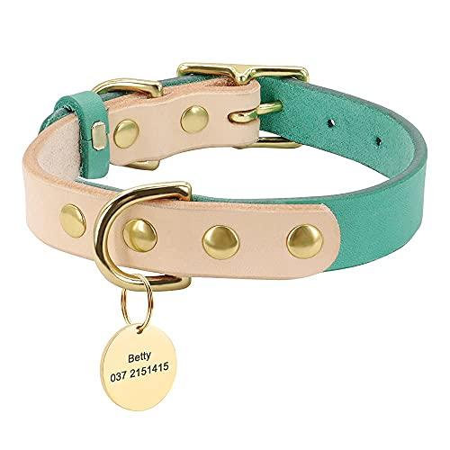 QIXIAOCYB Cuello Perro Personal Personalizado Cuello Personalizado Cuello Perro Dog Grabado Nombre de Perro Etiquetas para Pequeñas Perros Medianos Chihuahua Yorkshire (Color : Green, Size : M)