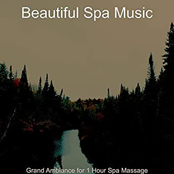 Grand Ambiance for 1 Hour Spa Massage