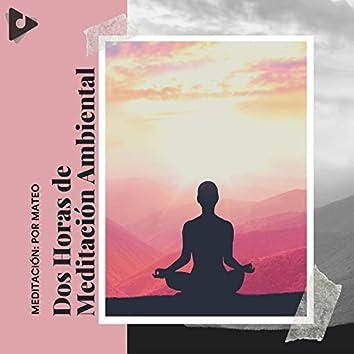Dos Horas de Meditación Ambiental