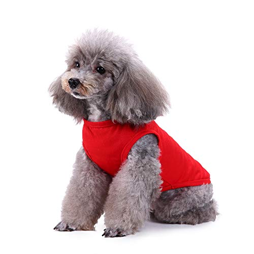 Modow normale lak zomer vest-huisdierkleding, leuke puppy kleding-uitgangstijdjama's voor de kleine en middelgrote honden en katten.