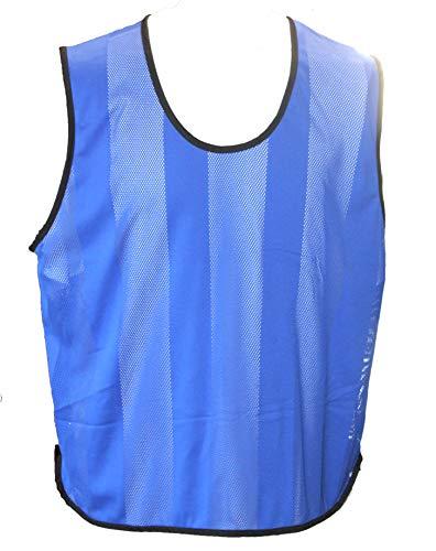 Leibchen - Qualitäts Trainingsleibchen, 10-er Pack Kennzeichenhemden / Markierungshemden (blau, Senior)