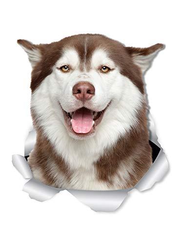 Winston & Bear Happy Siberian Husky Wandaufkleber – 2er-Pack – Husky 3D Aufkleber für Wände, Autos, Toilette und mehr – Einzelhandelsverpackung Husky Geschenke