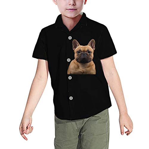 WELLFLYHOM Button-Down Dress Shirts for Boys Size 7-8 Years Cute Dog Design Short Sleeve Summer Tops Blouses Youth Kids Child Casual Shirt (French Bulldog, Black)