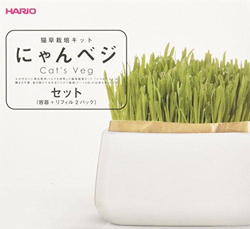 ハリオ(HARIO)猫草栽培キットにゃんベジセット