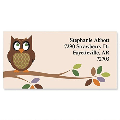 Owl Personalized Return Address Labels – Set of 144, Large, Self-Adhesive, Flat-Sheet Labels, by Colorful Images