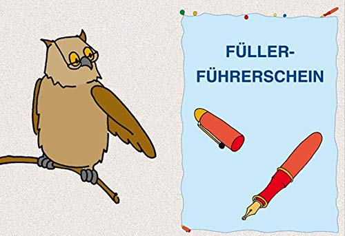 Füller-Führerschein - Klassensatz Führerscheine (Bergedorfer® Führerscheine)