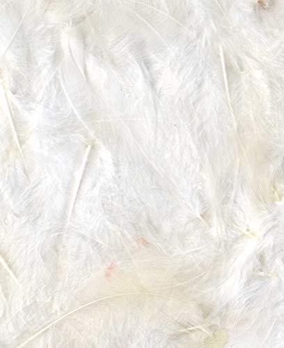 Artémio Federn-Weiß-Säckchen 3 g-Ébouriffées Lg 8 bis 12 cm-Dekovögel