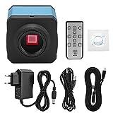 Akozon C-Mount Kamera 14MP HDMI USB Industrie Video Mikroskop Kamera Set High Definition(EU-Stecker)