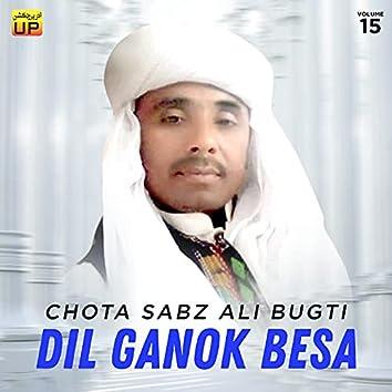 Dil Ganok Besa, Vol. 15