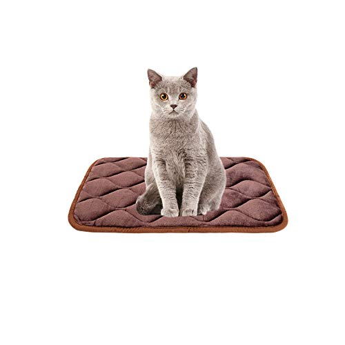Furrybaby Dog Bed Mat Soft Crate Mat with Anti-Slip Bottom Machine Washable Pet Mattress for Dog Sleeping (XS 21x14'', Dark Brown Mat)