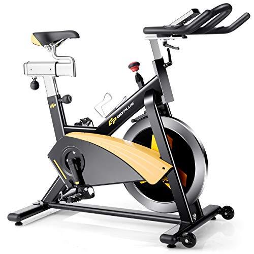 Gopluse magnetic spin bike