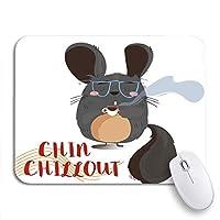 NINEHASA 可愛いマウスパッド 面白いかわいい漫画チンチラ動物のテキスト誕生日穏やかな滑り止めゴムバッキングコンピューターマウスパッド用ノートマウスマット