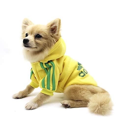 QiCheng&LYS Hundemantel Adidog Hund Hoodies Kleidung, Pet Puppy Katze Niedlicher Baumwoll Warm Hoodies Coat Pullover (S, gelb)