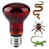 HEEPDD Reptile Heating Bulb, Durable Infrared Heat Lamp Warming Light Bulb Red Pet Light for Reptile and Amphibian Lizard Tortoise Spider Snake Chameleon 220-230V(50W)