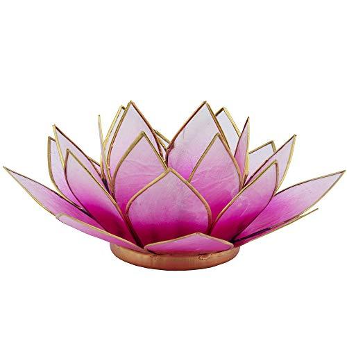 Lotus Teelicht pink aus Capiz Muschel - Natur Qualität Kerzenhalter, Windlichter, Teelichthalter - Dekoration 16 cm x 15 cm x 8 cm