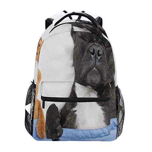 NUXIANY Backpack Bag,French Bulldog Sleeping With Teddy Bear Cozy Bed Best Friends Fun Dreams Image,Quality Stylish Pattern backpacks Trendy for Women Men Outdoor Bag