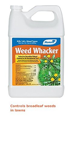 Monterey Weed Whacker Size: 1 Gallon
