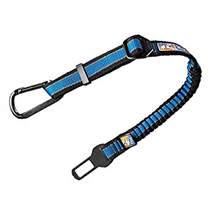 Kurgo Direct to seat belt Tether for Dogs, Car seat belt for Pets, Adjustable Dog Safety Belt Leash, Quick & Easy Installation, Works with Any Pet Harness, Carabiner, Swivel, Bungee