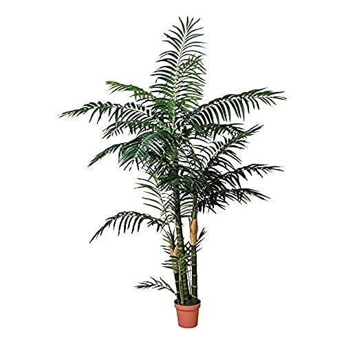Catral Germania Decorazione, pianta Palmera 120cm, Verde, 130x 20x 20cm, 74010012