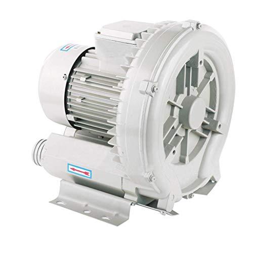 LXLH Ventilatore a vortice, Guscio in Alluminio aeronautico, Grande Volume di Aria di Scarico, Basso consumo energetico, Motore Tutto in Rame, Filtro per Bassi, Pompa d'Aria di aspirazione e aspi