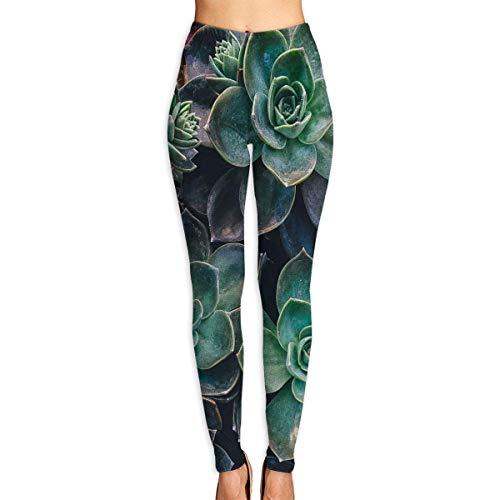 Ewtretr Yoga Pilates Hosen Fitnesshose für Damen, Succulent Plants Printed Leggings Full-Length Yoga Workout Leggings Pants