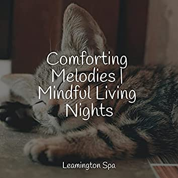 Comforting Melodies | Mindful Living Nights