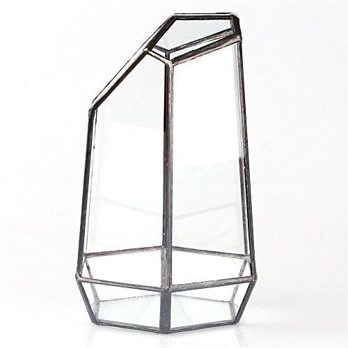 Polyédrique irrégulier géométrique Terrarium en verre Box Lanterne Succulents Pot de fleurs plantes Air Support bonsaï Pot de fleurs