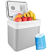 AstroAI 26-Quart Portable Thermoelectric Car Electric Cooler with 2 Ice Packs (Gray)